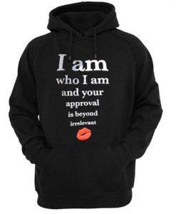approval is beyond irrelevant hoodie ay