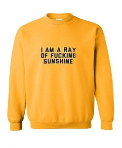 I am a ray of fucking sunshine sweatshirt ZNF08