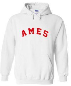 ames hoodie THD